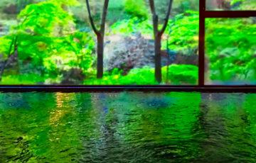 温泉情報共有マップくんを使い、大自然の魅力に包まれてきた