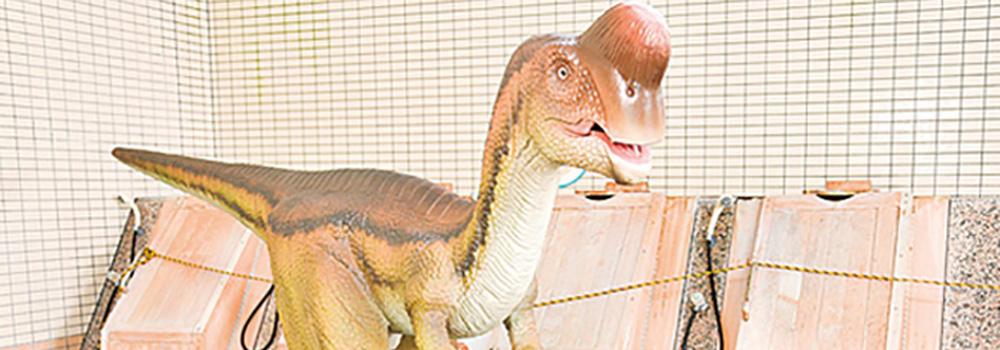 恐竜好きも満足できる「温泉情報共有マップくん」1