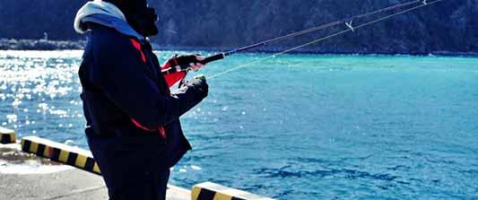 「釣りスポット情報共有マップ」で挑戦!サビキ釣りの魅力